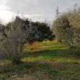 foto 7 - Bientina casale nel verde della Toscana a Pisa in Vendita