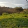 foto 4 - Bientina casale nel verde della Toscana a Pisa in Vendita