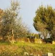 foto 3 - Bientina casale nel verde della Toscana a Pisa in Vendita