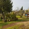 foto 1 - Bientina casale nel verde della Toscana a Pisa in Vendita