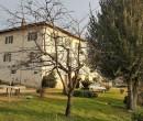 Annuncio vendita Bientina casale nel verde della Toscana