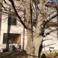foto 5 - Castelmarte casa con ampio giardino a Como in Vendita