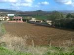 Annuncio vendita Guasila terreno edificabile