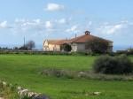 Annuncio vendita Ragusa tenuta agricola sito in contrada Palazzola