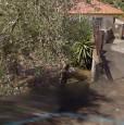 foto 1 - Misterbianco terreno edificabile a Catania in Vendita