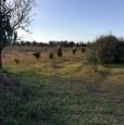 foto 16 - Terreno agricolo nell'agro di Uta a Cagliari in Vendita