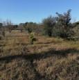 foto 14 - Terreno agricolo nell'agro di Uta a Cagliari in Vendita