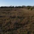 foto 7 - Terreno agricolo nell'agro di Uta a Cagliari in Vendita