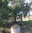 foto 6 - Terreno agricolo nell'agro di Uta a Cagliari in Vendita