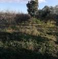 foto 0 - Terreno agricolo nell'agro di Uta a Cagliari in Vendita