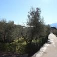 foto 3 - Capannori sulle colline villa singola a Lucca in Vendita