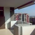 foto 2 - Pomezia appartamento panoramico con vista mare a Roma in Vendita