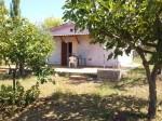 Annuncio vendita Gallicano nel Lazio rustico