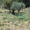 foto 2 - Morolo fabbricato rurale su due livelli a Frosinone in Vendita