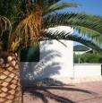 foto 1 - Vieste sul lungomare Enrico Mattei casa vacanza a Foggia in Affitto