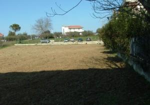 Annuncio vendita San Giovanni Teatino terreno edificabile