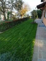 Annuncio vendita Vernasca villa con ampio giardino