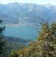 foto 1 - Introzzo casa di montagna a Lecco in Vendita