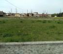 Annuncio vendita Da privato a Ferrara città lotto edificabile