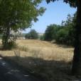 foto 3 - Saltara lotto edificabile a Pesaro e Urbino in Vendita