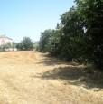 foto 1 - Saltara lotto edificabile a Pesaro e Urbino in Vendita