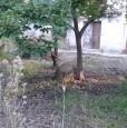 foto 0 - Solarino appezzamento di terreno a Siracusa in Vendita