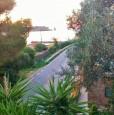 foto 5 - Isola del Giglio appartamento terrazza panoramica a Grosseto in Affitto