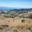 foto 11 - Terreno agricolo a Condofuri a Reggio di Calabria in Vendita