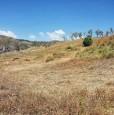 foto 9 - Terreno agricolo a Condofuri a Reggio di Calabria in Vendita