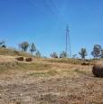 foto 8 - Terreno agricolo a Condofuri a Reggio di Calabria in Vendita