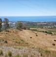 foto 7 - Terreno agricolo a Condofuri a Reggio di Calabria in Vendita