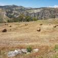 foto 3 - Terreno agricolo a Condofuri a Reggio di Calabria in Vendita