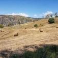 foto 1 - Terreno agricolo a Condofuri a Reggio di Calabria in Vendita
