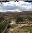 foto 3 - Maremma Toscana azienda agricola a Grosseto in Vendita