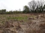 Annuncio vendita Terreno zona Loneriacco