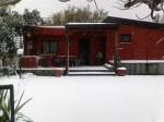 Annuncio vendita Etna nord Linguaglossa villino