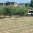 foto 2 - Mongrassano terreno edificabile con capannone a Cosenza in Vendita