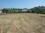 Annuncio vendita Mongrassano terreno edificabile con capannone