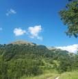 foto 0 - Vallo di Nera Monte Grande terreno a Perugia in Vendita