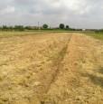foto 0 - Terreno edificabile agricolo in Albania a Arezzo in Vendita
