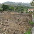 foto 2 - Lotto edificabile in località San Procopio Amantea a Cosenza in Vendita