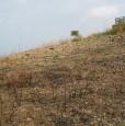 foto 0 - Lotto edificabile in località San Procopio Amantea a Cosenza in Vendita