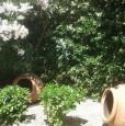 foto 2 - Villetta accesso sul mare zona blu San Vincenzo a Livorno in Affitto