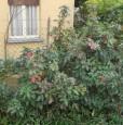 foto 1 - Ceretto di Carignano casa a Torino in Vendita