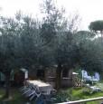 foto 8 - Anzio villa a Roma in Vendita