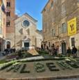foto 12 - Centro storico di Albenga appartamento a Savona in Vendita