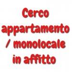 Annuncio affitto Milano ragazza cerca appartamento
