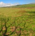 foto 3 - San Roberto appezzamenti di terreno agricoli a Reggio di Calabria in Vendita