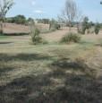 foto 6 - Montefalco terreno agricolo edificabile a Perugia in Vendita