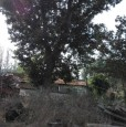 foto 5 - Montefalco terreno agricolo edificabile a Perugia in Vendita